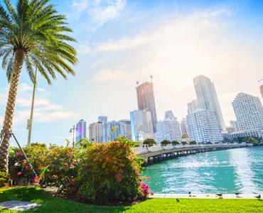 Florida city and Flamingo City