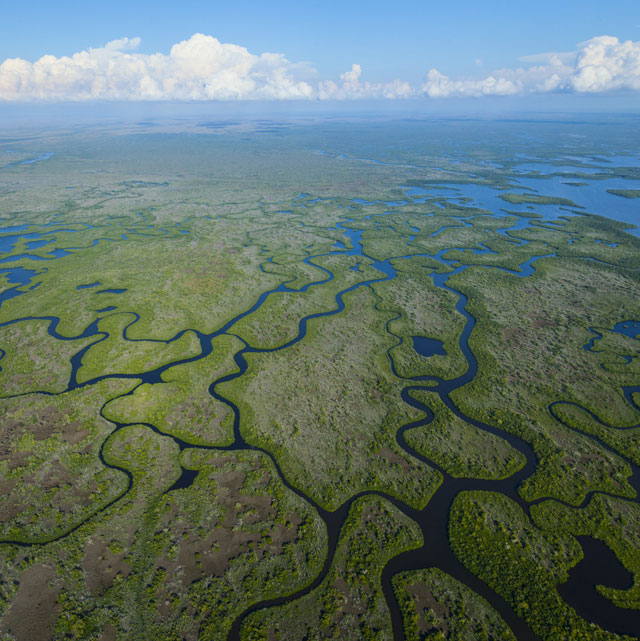 The Everglades, the tip of Florida